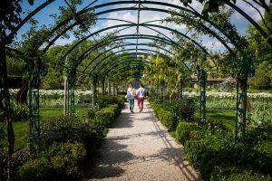 Couple dans Jardin